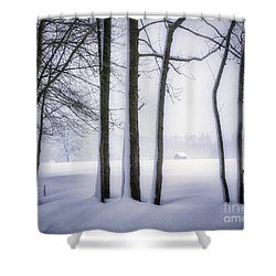Shower Curtain featuring the photograph Beauty Without Color by Edmund Nagele