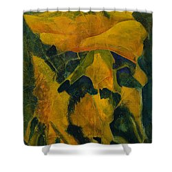 Becoming Abstract Shower Curtain