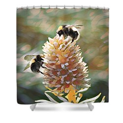 Bee Bee Shower Curtain