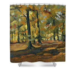 Beeches In Autumn Shower Curtain