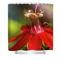 Beeline Movement Shower Curtain