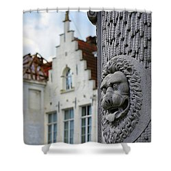 Shower Curtain featuring the photograph Belgian Coat Of Arms by Nathan Bush