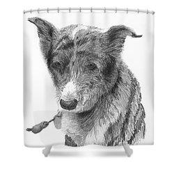 Beloved Pet Dog Shower Curtain