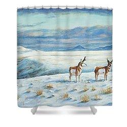 Belt Butte Winter Shower Curtain