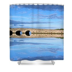 Belvelly Castle Reflection Shower Curtain