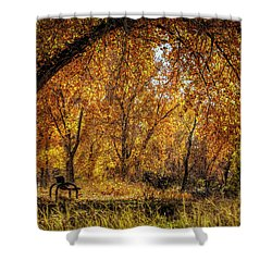 Bench With Autumn Leaves  Shower Curtain