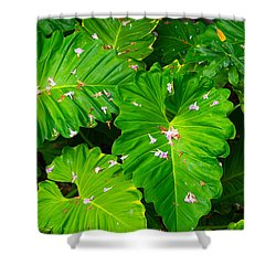 Big Green Leaves Shower Curtain