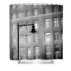 Bird Lamp Shower Curtain