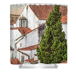 Birds Over Obidos Shower Curtain