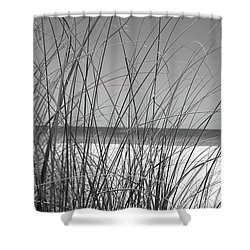 Black And White Beach View Shower Curtain