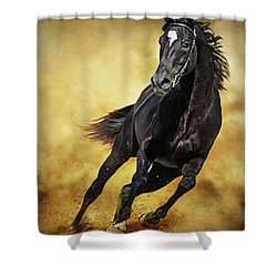 Shower Curtain featuring the photograph Black Horse Running Wild by Dimitar Hristov
