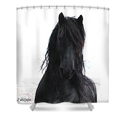 Black Pearl Gaze Shower Curtain