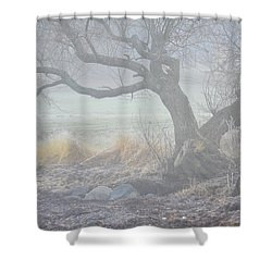 Shower Curtain featuring the photograph Blanket Of Fog by Randi Grace Nilsberg