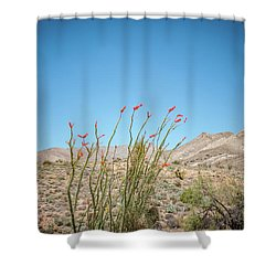 Blooming Ocotillo Shower Curtain