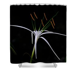Blooming Poetry Shower Curtain