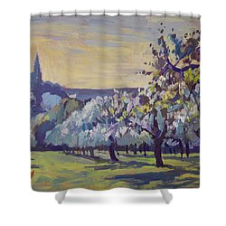 Blossom Trees Near Vijlen Shower Curtain