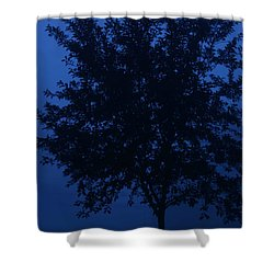 Blue Cherry Tree Shower Curtain