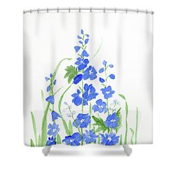 Blue Larkspur  Shower Curtain