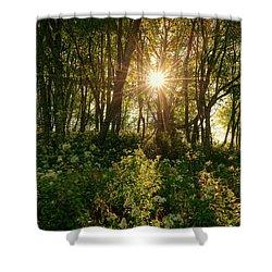 Blue Ridge Parkway - Last Of Summers Light, North Carolina Shower Curtain