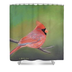 Bonded Pair - Male Cardinal Shower Curtain