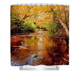 Boone Fork Stream Shower Curtain