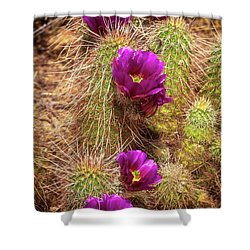 Shower Curtain featuring the photograph Bouquet Of Beauty by Rick Furmanek