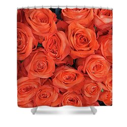 Bouquet Of The  Living Coral Roses Shower Curtain
