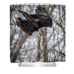 Breakfast On The Fly Shower Curtain