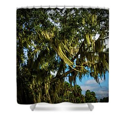 Breezy Florida Day Shower Curtain