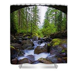 Bridge Below Rainier Shower Curtain