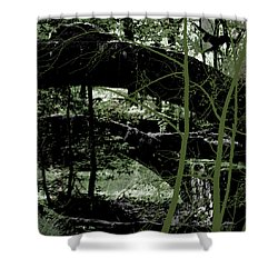 Bridge Vi Shower Curtain