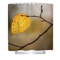 Shower Curtain featuring the photograph Bright Fall Leaf 9 by Michael Arend