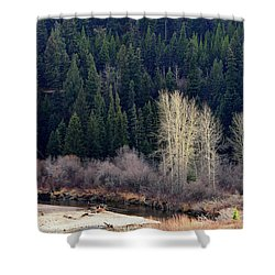 Bright Trees Without Leaves Shower Curtain