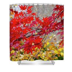 Brilliant Fall Color Shower Curtain
