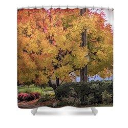 Brilliant Fall Color Tree Yellows Oranges Seasons  Shower Curtain