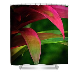 Bromelia Shower Curtain