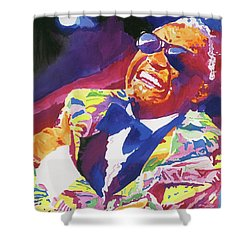 Brother Ray Charles Shower Curtain