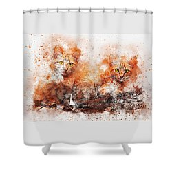 Brothers Cat Shower Curtain