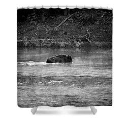 Buffalo Crossing Shower Curtain