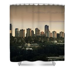 Burnaby Dusk Shower Curtain