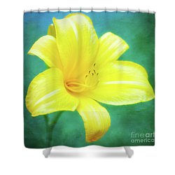 Buttered Popcorn Daylily In Her Glory Shower Curtain