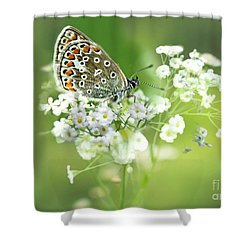 Butterfly On Babybreath Shower Curtain