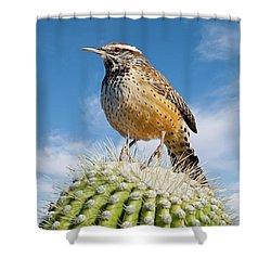 Cactus Wren On A Saguaro Cactus Shower Curtain
