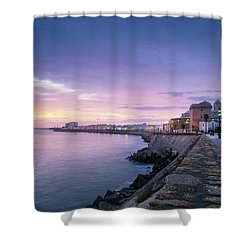 Shower Curtain featuring the photograph Cadiz Skyline And Cathedral by Pablo Avanzini