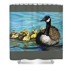 Canadian Goise And Goslings Shower Curtain