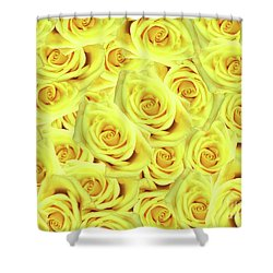 Candlelight Roses Shower Curtain
