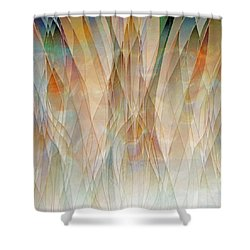 Canyon Falls  Shower Curtain