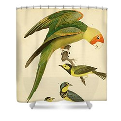 Carolina Parrot Shower Curtain