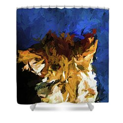 Cat And The Cobalt Blue Wall Shower Curtain
