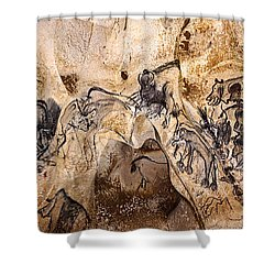 Chauvet Lions And Rhinos Shower Curtain